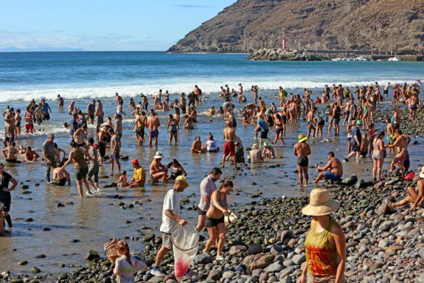 frisch gebadet kommen die Teilnehmer des Tümpelfests aus dem Meer © Alejandro Ramos