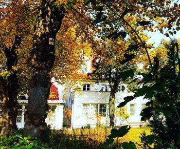 Goldener Herbst in Warnemünde