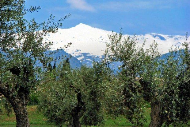 Die schneebedeckten Gipfel der Sierra Nevada - © Bildpixel / pixelio.de (rkn)