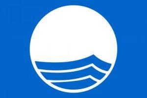420px-Blue_Flag_Logo_svg
