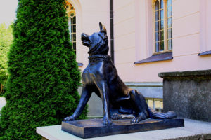 Schloss Granitz Jagdhund / © Reinhard Grieger