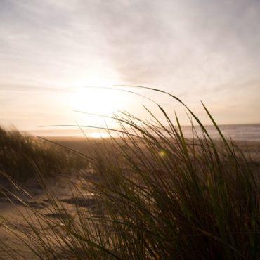 6 ausgesprochen gute Gründe für einen Urlaub auf Juist