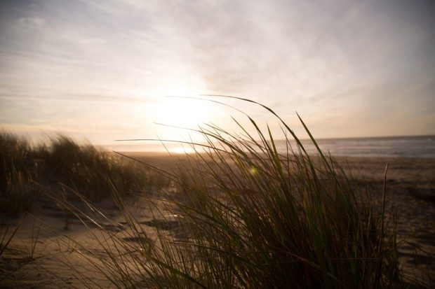 Dünen am Strand - Foto: Pixabay, CC0