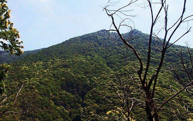 Gipfel im Nationalpark (© InterDomizil GmbH)