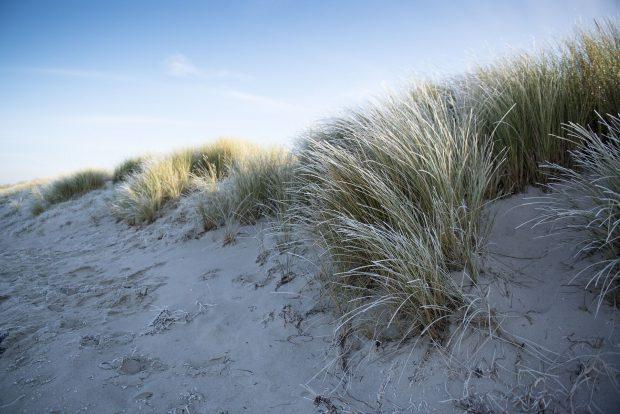 Die Ostsee im Winter // Bild: Pixabay (CC0)