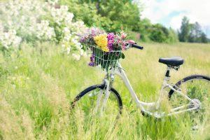 Fahrradfahren auf Juist – die schönsten Routen