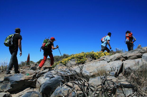 Wandern im Teide-Nationalpark // Bild: Pixabay (CC0)