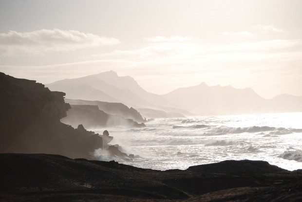 exotisch und teilweise wild geht es auf Fuerteventura zu - Foto: Pixabay (Creative Commons CC0)