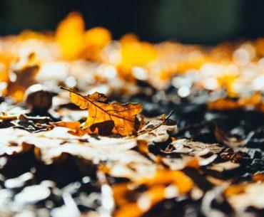 Städtereise im Herbst: 10 Städtereisen, um dem schlechten Wetter zu entfliehen