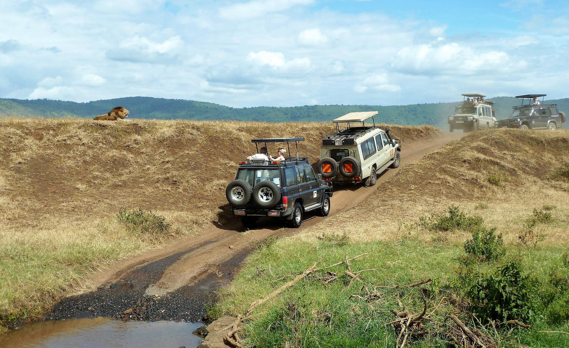 Jeep-Safri