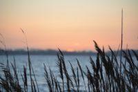 Was weißt du über Juist und die Nordsee?