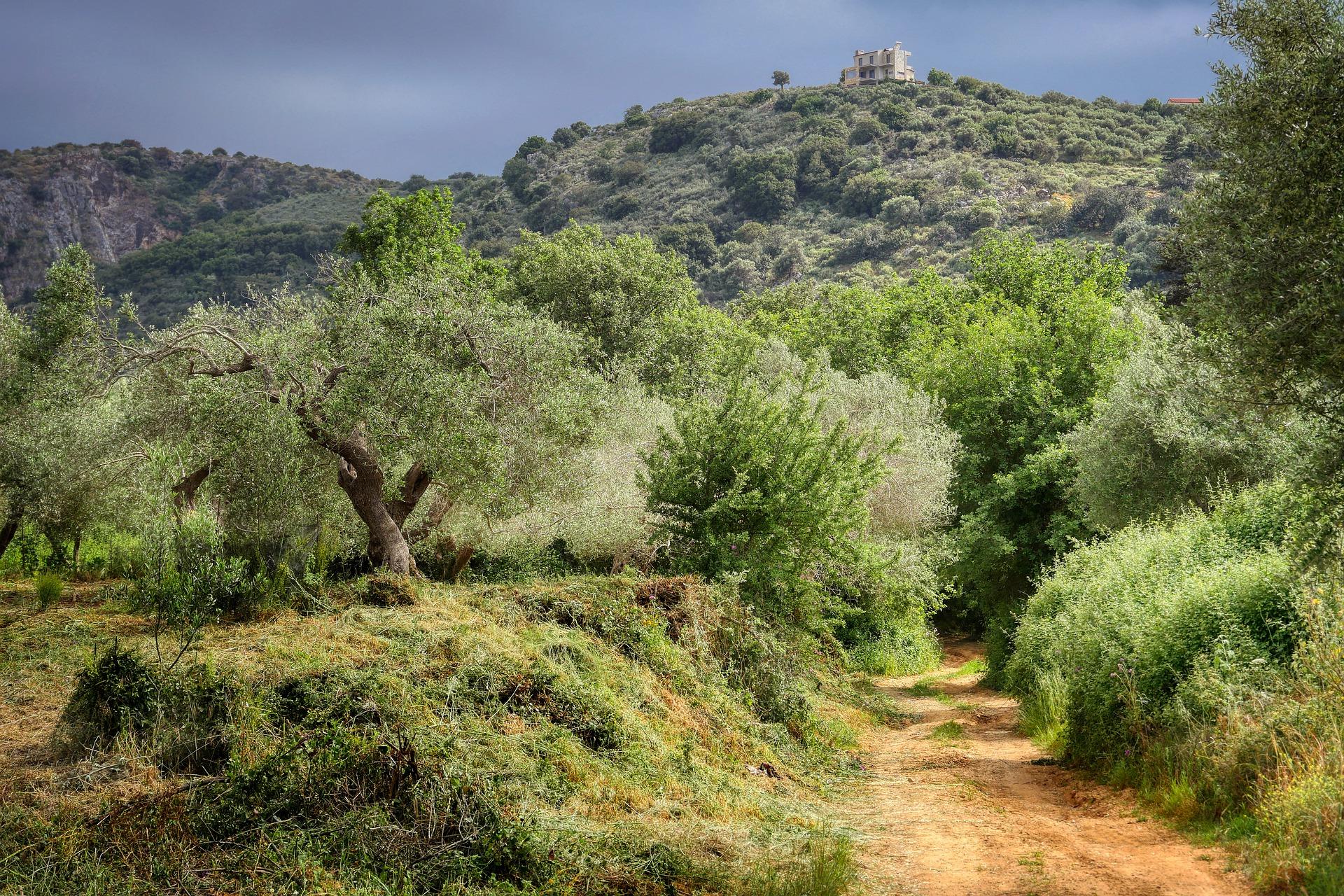 Wanderroute auf Kreta