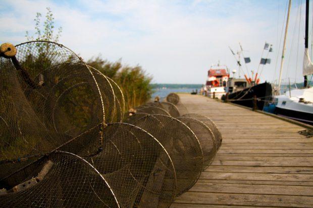 Eine traditionelle Reuse zum Fischfang // Bild: Pixabay (CC0)