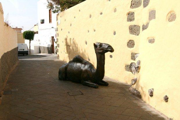 Kamel aus Bronze mitten in der Gasse neben dem Hotel / Copyright © Marion Hagedorn/Interdomizil